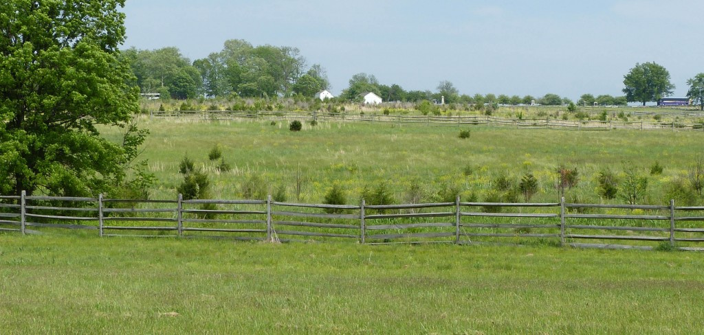 View of Bryan farm from Bliss site